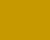 iBuyBlack logo